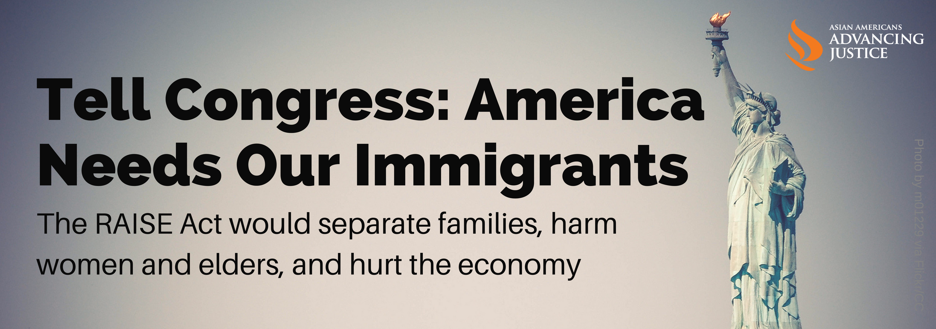 America Needs Our Immigrants graphic